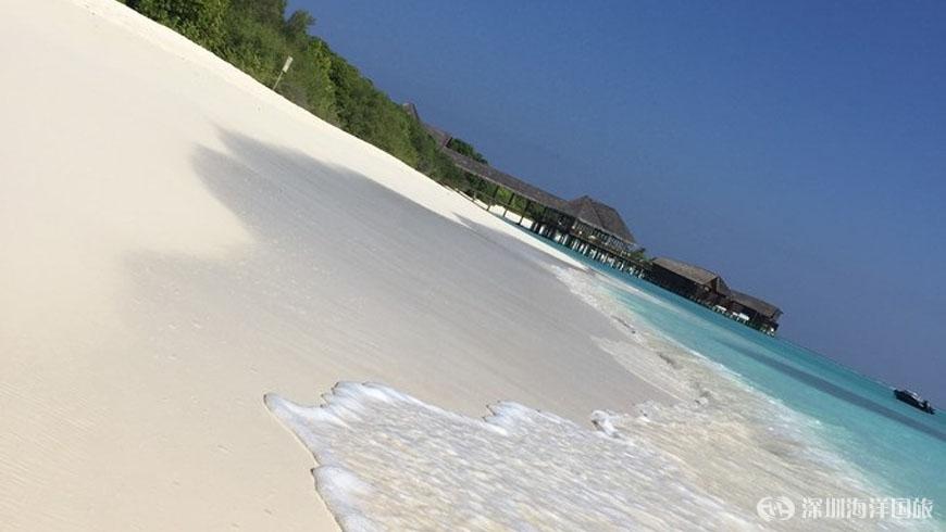 神仙珊瑚岛---流连忘返之蜜月之旅 / 深圳市海洋国际